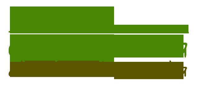 Logo Santa Maria de la Alameda