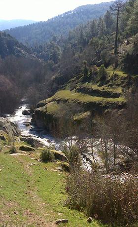 Ruta del Río Cofio