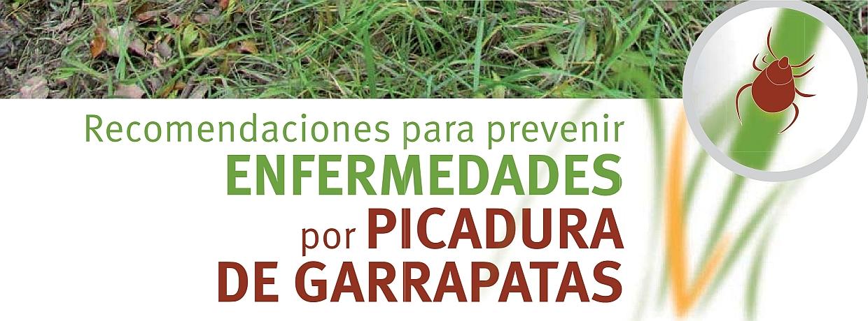 Resultado de imagen de Recomendaciones para prevenir ENFERMEDADES por PICADURA DE GARRAPATAS