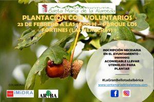 Plantación Betllotas @ Las Herreras | Las Herreras | Comunidad de Madrid | España
