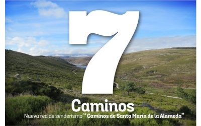 7 Caminos